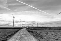 Windrädern auf Feld mit Feldweg