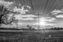 GETEC ENERGIE unterstützt Energieversorgungsunternehmen dabei, ihre Kunden mit Strom und Erdgas zu kostengünstigen, marktfähigen Preisen zu versorgen (White Label).