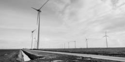 Landschaft mit Windkraftanlagen auf Feld