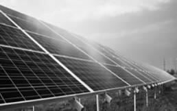 Photovoltaikanlage auf Feld