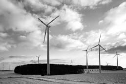 Windpark auf Feld