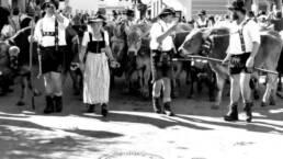 vier Personen in traditioneller bayrischer Tracht mit Kühen