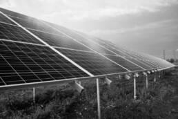 Photovoltaikanlagen auf Wiese